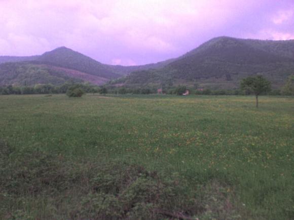 http://alyane.cowblog.fr/images/paysagesavril09030.jpg
