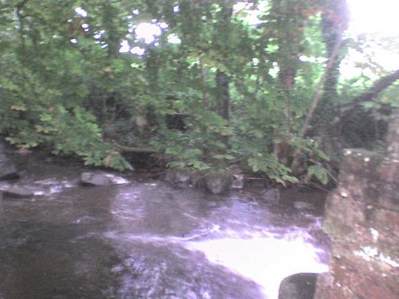 http://alyane.cowblog.fr/images/paysagesavril09053.jpg