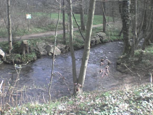 http://alyane.cowblog.fr/images/paysagesavril09182.jpg