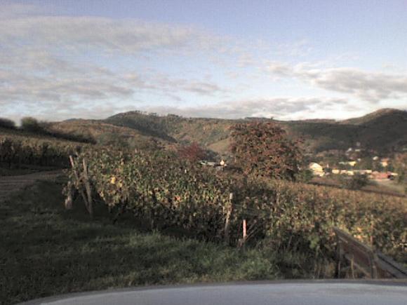 http://alyane.cowblog.fr/images/paysagesavril09528.jpg